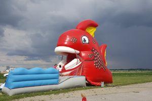 Riesenfisch - Red Snapper